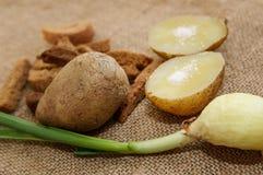 Batatas fervidas em uma casca com sal e uma cebola verde em uma tabela do close-up Alimento saudável fotografia de stock