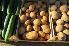 Batatas frescas Fotografia de Stock Royalty Free