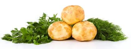 Batatas frescas e aneto e salsa verdes isolados sobre o branco Imagem de Stock