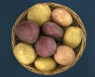 Batatas frescas na cesta no fundo azul velho Foto de Stock Royalty Free