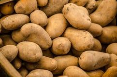 Batatas 1 Foto de Stock