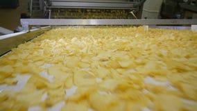 Batatas fritas fritadas em uma linha moderna em uma fábrica video estoque