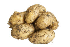 Batatas não descascadas em um fundo branco Fotografia de Stock