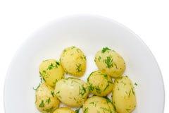 Batatas novas fervidas com aneto no close up branco do prato Foto de Stock Royalty Free