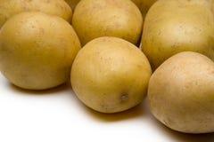 Batatas novas isoladas foto de stock