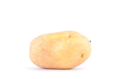 batatas orgânicas frescas no alimento vegetal da batata saudável branca do fundo isolado Imagem de Stock