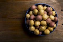 Batatas pequenas multi-coloridas cruas na bacia cerâmica na madeira Fotografia de Stock