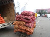 Batatas que estão sendo carregadas em um trole Fotos de Stock Royalty Free