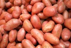 Batatas vermelhas Foto de Stock