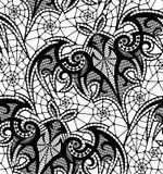 batavia картина безшовная Картина шнурка Стоковое фото RF