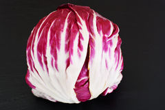 Batavian Italian Chicory Stock Photos