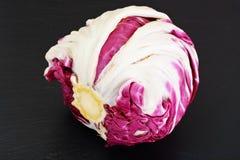Batavian Italian Chicory Royalty Free Stock Image