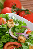 Batavian lettuce with tomatoes and croutons Stock Photo