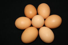 Batch of eggs Stock Photo