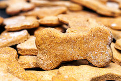 Batch of Homemade Dog Biscuits. Large batch of bone-shaped homemade dog cookies with selective focus on one treat stock image