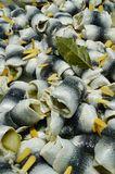 Batch of Pickled Herring Rollmops on Display. Close up of a beautifully prepared and displayed batch of traditional European pickled herring called Rollmops, for stock photo