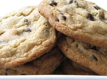 Batch of ultimate chocolate chip cookies Stock Photography