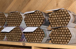 Batches of cigars on a shelf Stock Photography