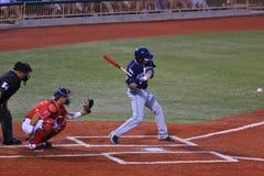 Bateador del béisbol profesional Foto de archivo libre de regalías