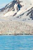 Bateau à voile devant le glacier dans le Svalbard, arctique Photographie stock libre de droits