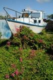 Bateau à voiles dans le jardin de fleur Photographie stock