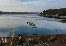Bateau d'huître de baie de Tomales dans le calme de début de la matinée images libres de droits