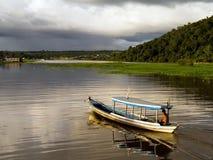 Bateau dans l'Amazônia photographie stock libre de droits