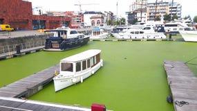 Bateau dans l'eau verte Photo stock