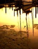 Bateau dans la marina de crique Photographie stock libre de droits