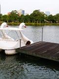 Bateau de cygne en parc Photo stock