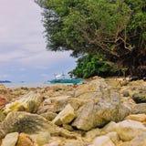 Bateau de Fisherman's sous l'arbre de palétuvier photographie stock