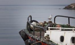Bateau de mouette, de mer et de pêcheur Images libres de droits
