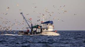 Bateau de pêche avec des mouettes Photographie stock libre de droits