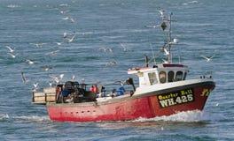 Bateau de pêche avec des mouettes, Angleterre Photographie stock libre de droits