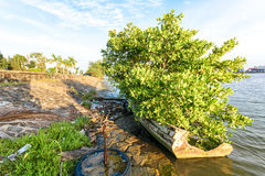 Bateau de pêche mexicain Image libre de droits