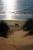 Bateau de pêche sur le rivage photos libres de droits
