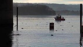 Bateau de sauvetage sur le Rhin l'allemagne banque de vidéos