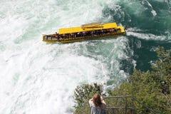 Bateau de vitesse normale aux automnes du Rhin, Suisse. Images stock