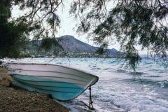 Bateau et arbre bleus sur la plage Concept - vacances, tourisme G Image stock