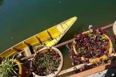 Bateau et fleurs sur le lac image stock
