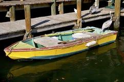 Bateau et pélicans de rangée colorés à un dock Photo stock