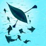 Bateau et poissons dans l'eau Photographie stock libre de droits