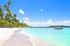 Bateau rouge dans une plage tropicale au Brésil Images stock