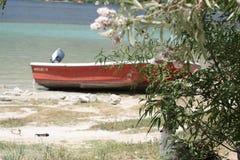Bateau rouge sur le rivage de lac et oie sauvage dans l'ombre de Images stock