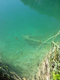 Bateau sous-marin Photo libre de droits