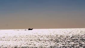 Bateau sur la mer miroitante lumineuse clips vidéos
