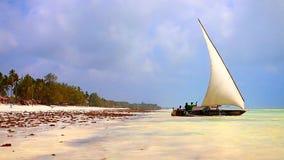 Bateau sur la plage de la Tanzanie banque de vidéos