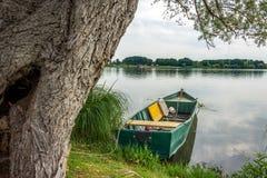 Bateau vert sur le lac de mantova Photographie stock libre de droits