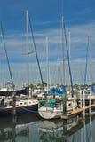 Bateaux à voile dans la marina chez Dundedin, la Floride Photo stock