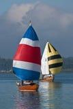 Bateaux à voiles Image stock